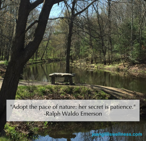 "Image of Stone Bench on the River with quote: ""Adopt the pace of nature: her secret is patience."" - Ralph Waldo Emerson"